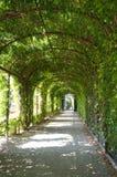 Parque hermoso en Schoenbrunn, Viena Foto de archivo libre de regalías