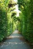 Parque hermoso en Schoenbrunn, Viena Imagenes de archivo