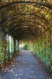 Parque hermoso en Schoenbrunn, Viena Fotos de archivo libres de regalías