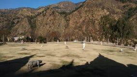 Parque Himachal Pradesh solan da herança fotografia de stock royalty free