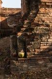 Parque histórico de Ayutthaya Fotografía de archivo