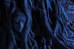 Parque histórico de Ayutthaya Imagenes de archivo