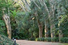 Parque histórico de Málaga imagen de archivo