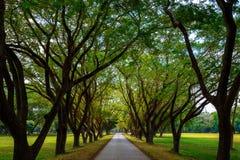 Parque histórico del Si Satchanalai en Sukhothai, Tailandia Imágenes de archivo libres de regalías