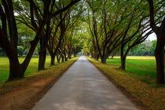 Parque histórico del Si Satchanalai en Sukhothai, Tailandia Imagen de archivo libre de regalías