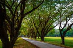 Parque histórico del Si Satchanalai en Sukhothai, Tailandia Foto de archivo libre de regalías
