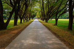 Parque histórico del Si Satchanalai en Sukhothai, Tailandia Imagen de archivo