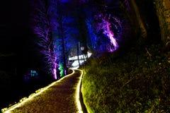 Parque iluminado en Zagreb, Croacia durante el festival de luces fotos de archivo