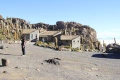 Parque Incahuasi, Salar De Uyuni Bolivia Stock Photography