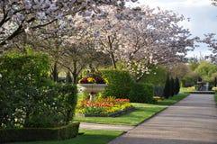 Parque inglés hermoso Imagen de archivo