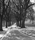 Parque inglês do inverno Imagem de Stock Royalty Free