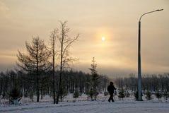 Parque, invierno, madrugada, el caminar nórdico Trenes mayores de una mujer en el parque del invierno temprano por la mañana fotografía de archivo