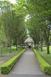 Parque irlandés de la ciudad fotos de archivo