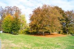 Parque italiano colorido con los árboles y colores y agua del otoño imagen de archivo