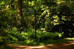 Parque japonés en La Haya Imagenes de archivo