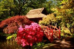 Parque japonés en La Haya Fotografía de archivo libre de regalías