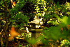 Parque japonês em Haia Fotografia de Stock Royalty Free