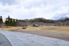 Parque japonês no inverno Foto de Stock Royalty Free