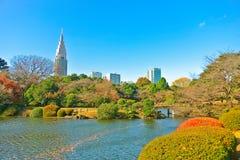 Parque japonês no outono no Tóquio, Japão Fotografia de Stock Royalty Free
