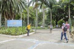 Parque Jardim a Dinamarca Luz, SP Brasil de Sao Paulo imagem de stock royalty free