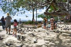 Parque Las Palomas i gamla San Juan, Puerto Rico Arkivbilder