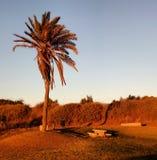 Parque Leumi Foto de archivo