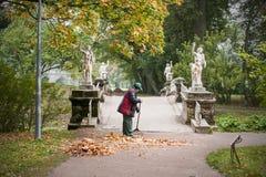 Parque limpio de Yardman de las hojas amarillas Foto de archivo
