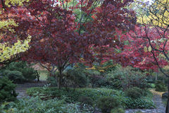 Parque Lithia Ashland, Oregon foto de stock