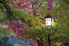 Parque Lithia Ashland, Oregon Imagens de Stock Royalty Free