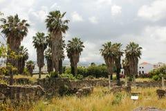 Parque local en Kos Imágenes de archivo libres de regalías