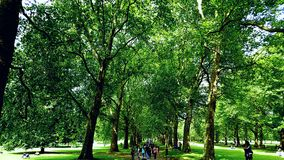 Parque Londres do couro cru Foto de Stock Royalty Free