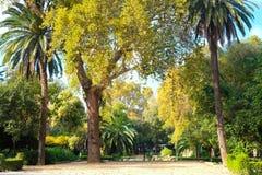 Parque Maria Luisa. Maria Luisa park in Seville, Andalusia, Spain Stock Photo