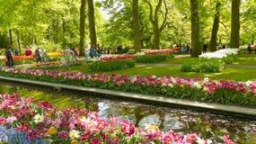 Parque na flor fotos de stock