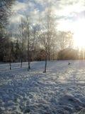 Parque na neve do inverno fotos de stock