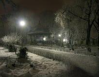 Parque na noite Imagens de Stock Royalty Free