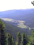 Parque nacional 1 de la montaña rocosa Fotografía de archivo