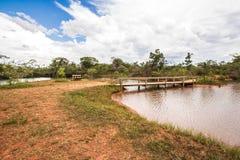 Parque Nacional Agua Mineral. Ilha Meditacao. Brazil, Brasila stock photography