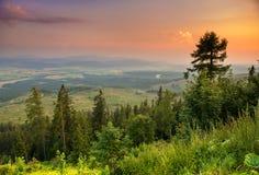 Parque nacional alto Tatra. Eslovaquia, Europa Imagen de archivo libre de regalías