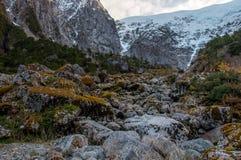 Parque Nacional av Queulat, Austral Carretera, huvudväg 7, Chile Royaltyfri Fotografi
