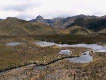 Parque nacional Cajas, Ecuador foto de archivo