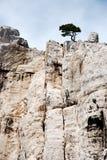 Parque nacional Calanques Fotografia de Stock Royalty Free