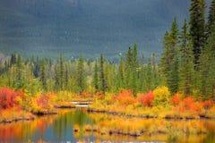 Parque nacional Canadá de Banff Foto de archivo libre de regalías