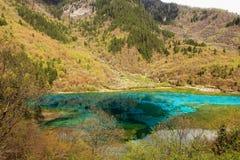 Parque nacional China de Jiuzhaigou Imagens de Stock Royalty Free