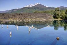 Parque Nacional Conguillo Chile Arkivbild