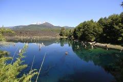 Parque Nacional Conguillo Cile Fotografia Stock Libera da Diritti