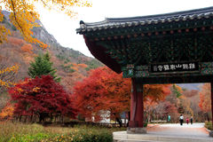 Parque nacional Coreia de Gyeryongsan imagens de stock royalty free