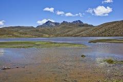 Parque Nacional Cotopaxi Royalty Free Stock Photo