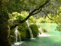 Parque nacional Croatia dos lagos Plitvice Fotografia de Stock Royalty Free