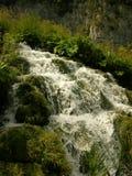 Parque nacional Croatia dos lagos Plitvice Foto de Stock Royalty Free