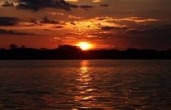 Parque nacional Cuyabeno Foto de Stock Royalty Free